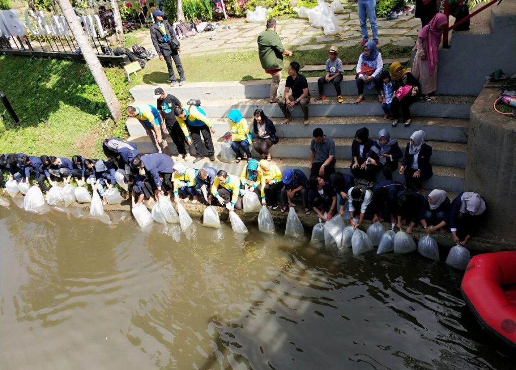 350 Ribu Ekor Benih Ikan ditebar di Teras Cikapundung