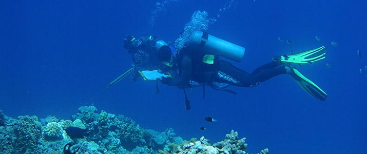 Kegiatan penelitian di dalam laut